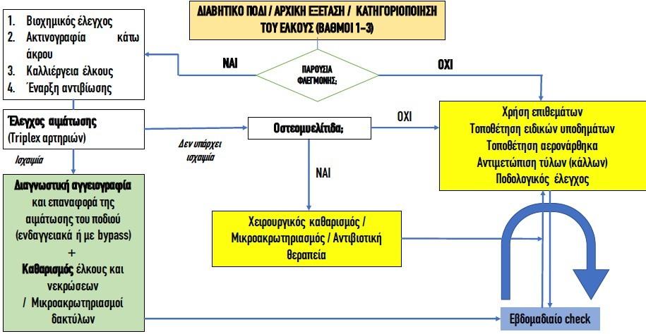 Το πρωτόκολλο της Athens Diabetic Foot για το διαβητικό πόδι σε βάθος (2/2)